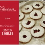 {Countdown to Christmas} Of Linzer Sables and snow