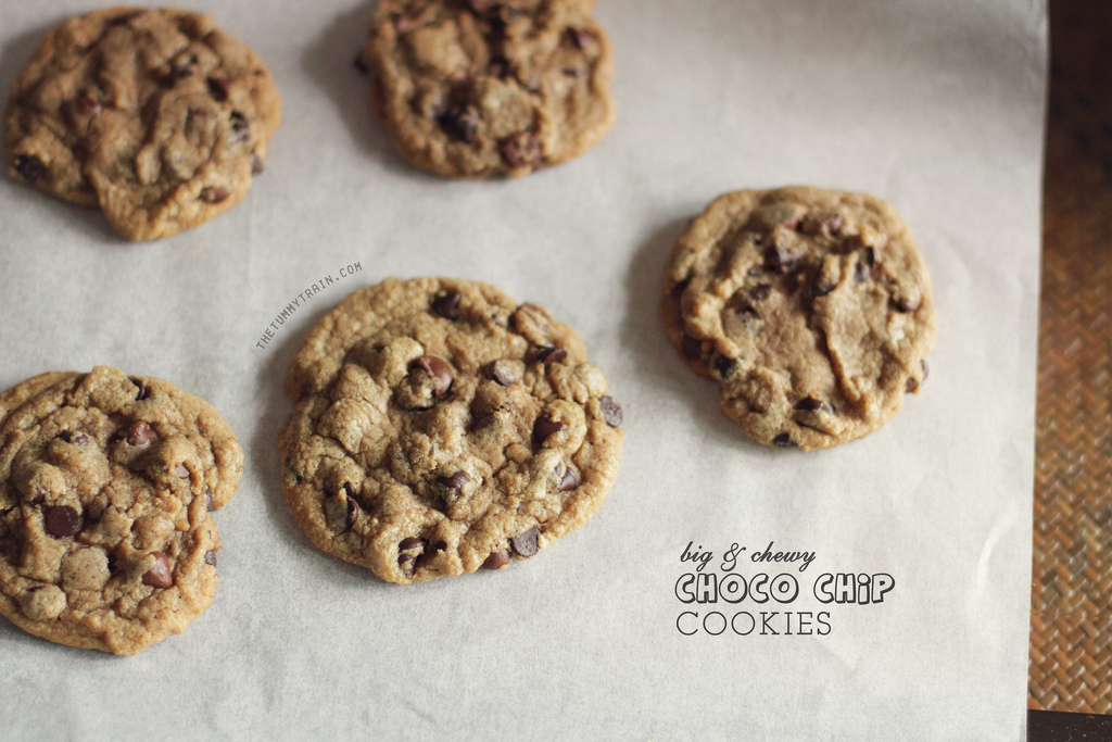 9452242500 fca174f64a b 1 - Chocolate chip cookie memories + a VIDEO TUTORIAL for beginners!