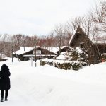 Sapporo Travel Diary 2017: The Magical and Historical Village of Hokkaido